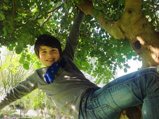 Bambino sull'albero