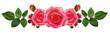 Obrazy na płótnie, fototapety, zdjęcia, fotoobrazy drukowane : Rose flowers arrangement