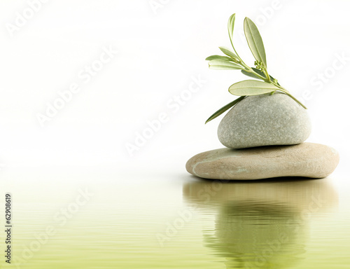 Foto op Canvas Olijfboom Ramo di ulivo su ciottoli di pietra e riflesso d'acqua