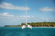 canvas print picture - Catamaran Sailing Boat near Saona, Carribean Sea
