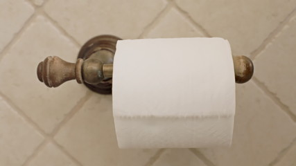 Toilet paper taking sheet