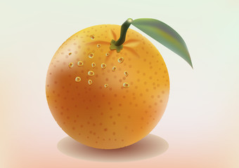 realistic vector banner orange