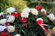 canvas print picture - Blumen der Trauer