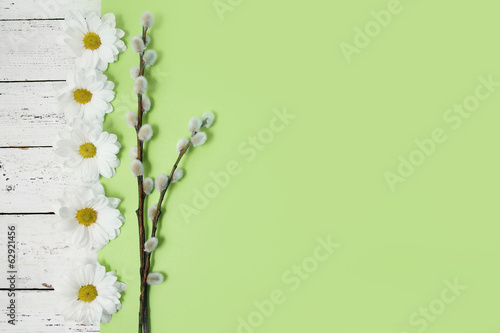 spring flowers and pussy willow twigs on wood background