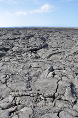 Lava field, Big island, Hawaii (USA)