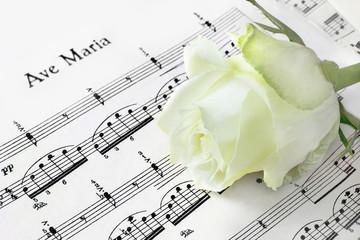 Ave Maria - Noten und Rose