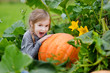 Cute little girl hugging a pumpkin