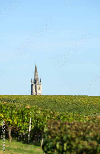 Vineyards Bordeaux Saint-Emilion