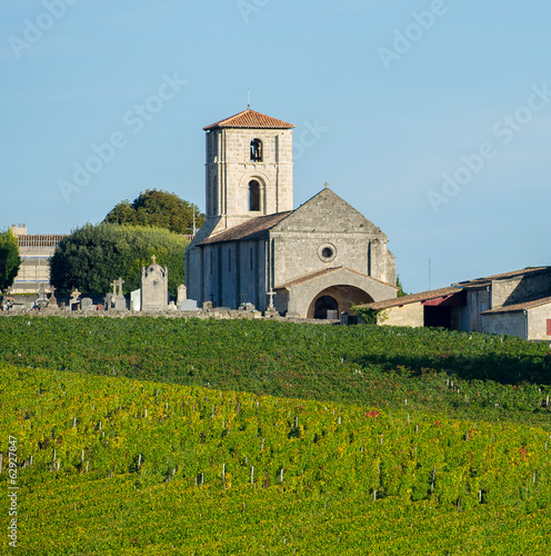 Vineyards Bordeaux Saint-Emilion-Montagne Saint-Emilion