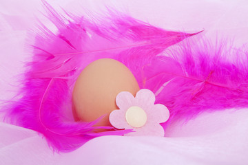 Chicken egg decorated for easter in closeup