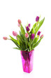 Bouquet of pink Dutch tulips in vase