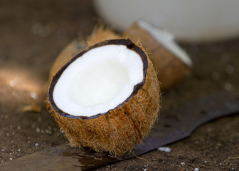 Broken coconut in closeup