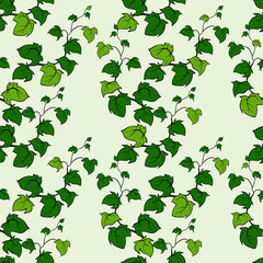 Ivy vector hand drawn seamless pattern