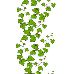 Ivy vector hand drawn seamless vertical  pattern
