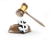 dollar symbol gavel on a white background