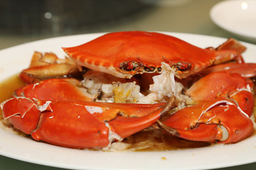 steamed sea crab on the plate