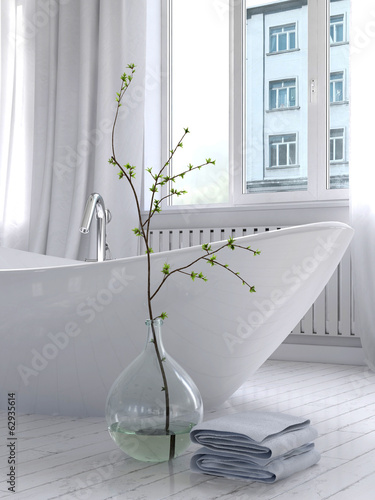 Pure white bathroom interior with separate bathtub