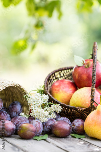 canvas print picture Obst in der Natur