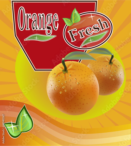 Fresh orange juice Banner