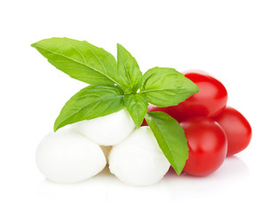 Mozzarella cheese with cherry tomatoes and basil