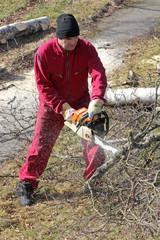 Beim Baumfällen
