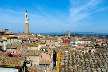 Siena Roofs