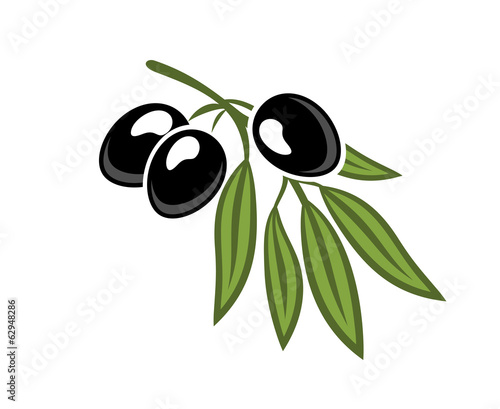 Black olives on a leafy twig