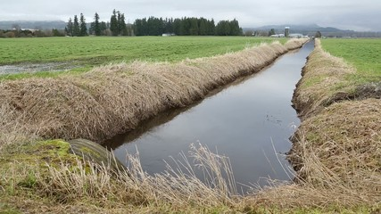 Farm Land Drainage Ditch