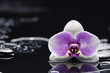 Zen stones and white orchid