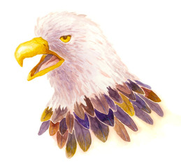 Watercolor Eagle