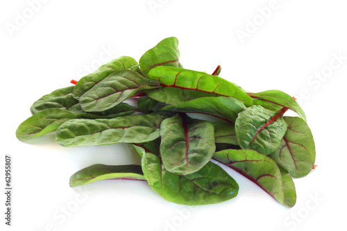 Mangold salad on white