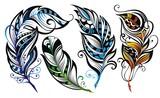 Fototapety Set of feathers