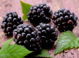 Balckberry fruit closeup