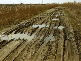 dirty rural road with deep tire tracks and rain puddles