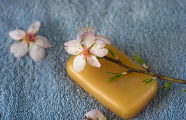 blossoming branch on natural soap on a towel