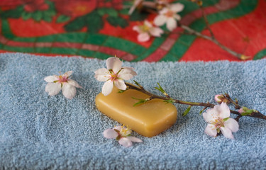 blossoming branch on natural soap