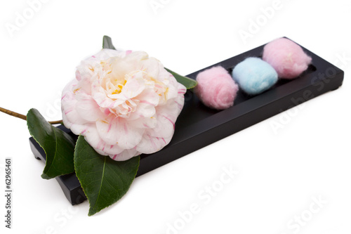 camellias with cotton