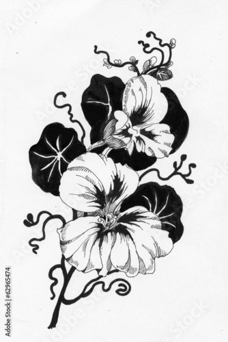 Beautiful painted flower sketch