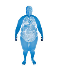 Overweight Female with interior organs