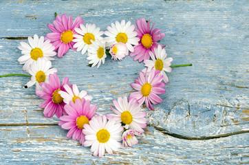 Romantik: Herz aus Margeriten auf blauem, alten Holz :)
