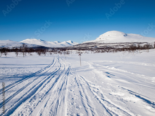 ski tracks in nordic winter landscape