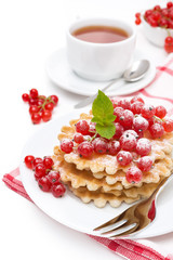 waffles with red currant, sprinkled powdered sugar for breakfast