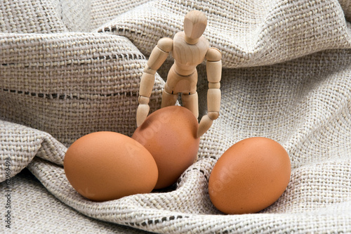 Three eggs and a manikin