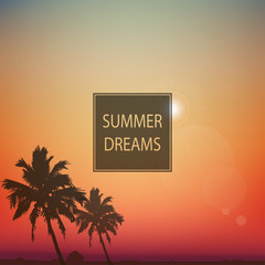 Summer day background with palm tree.