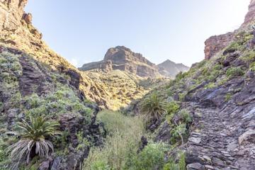 Masca valley, in Tenerife