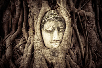 Buddha Head in the tree roots. Wat Mahathat. Ayutthaya, Thailand