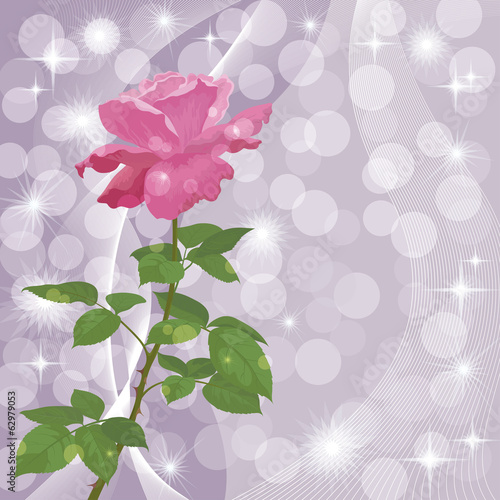 Holiday background with flower rose