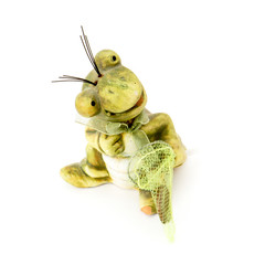 Little funny frog with a seine