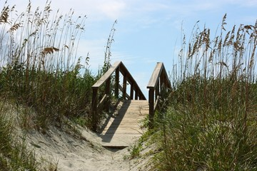 Boardwalk over Dune