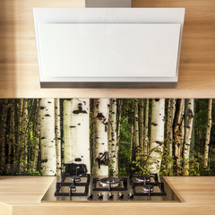 Cooker hood and stove in the modern kitchen.